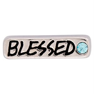 Picture of 'Blessed' Silver Charm